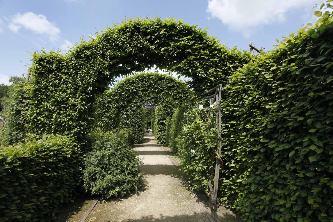 Les jardins médiévaux du prieuré d'Orsan dans le Berry
