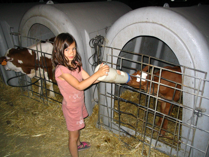 Le camping à la ferme séduit une clientèle familiale