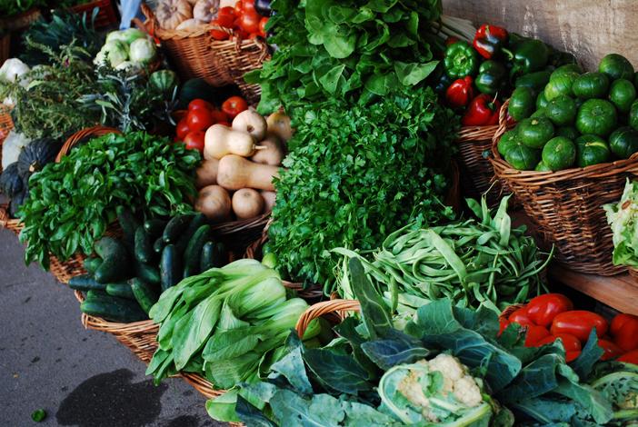 Dégustation des produits bio issus de la ferme
