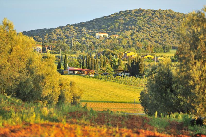 Paysage de Toscane dans le val d'Orcia