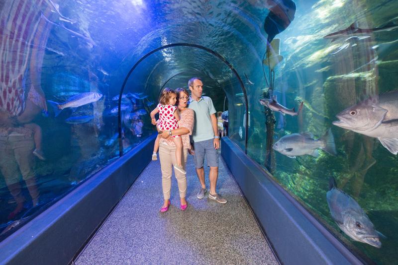 Le tunnel sous-marin de l'Océarium du Croisic