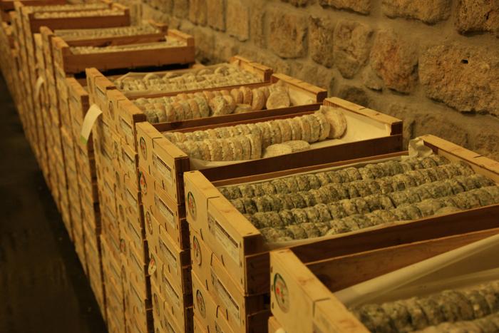 Les picodons, spécialités du terroir ardéchois