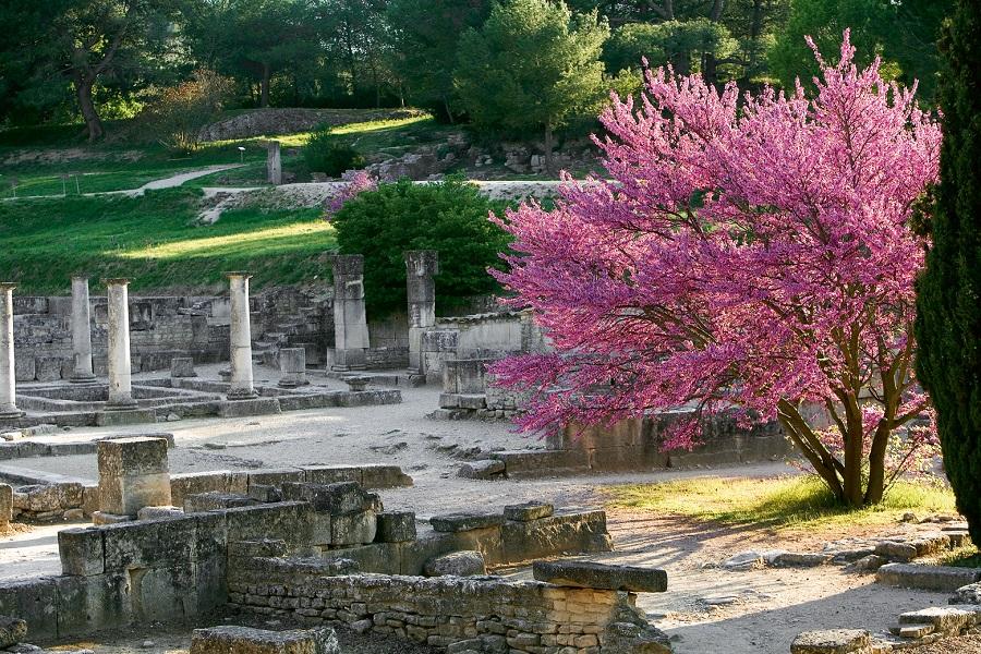 Fouille du site de Glanum à Saint-Rémy de Provence