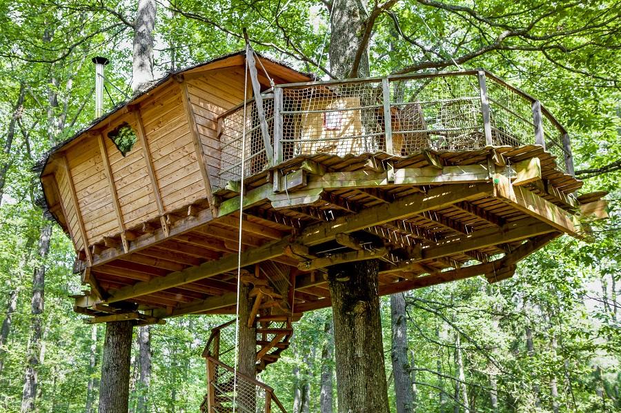 Le glamping : cabane dans les arbres