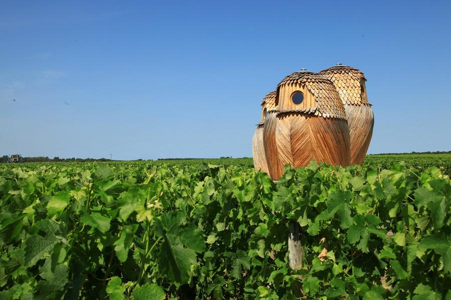 Vignes et art contemporain au Château d'Arsac