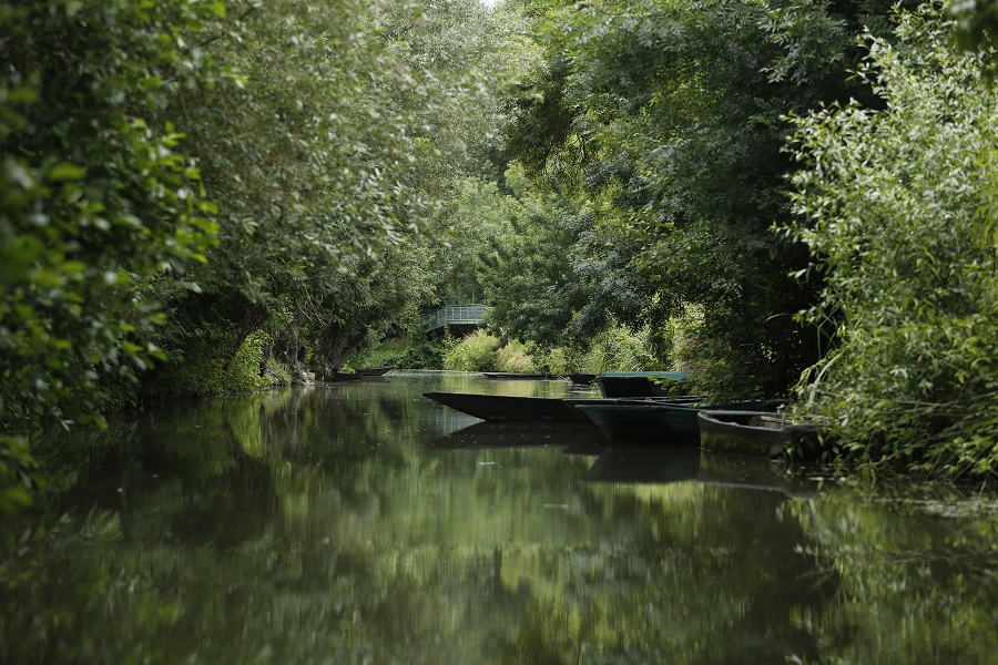 Venise Verte dans le Marais Poitevin