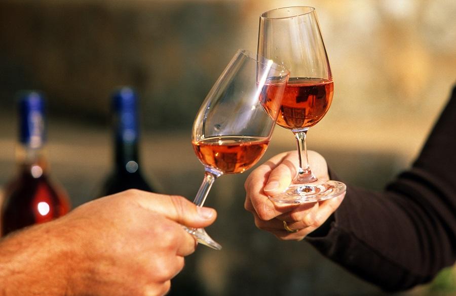 Dégustation des Côtes de Provence