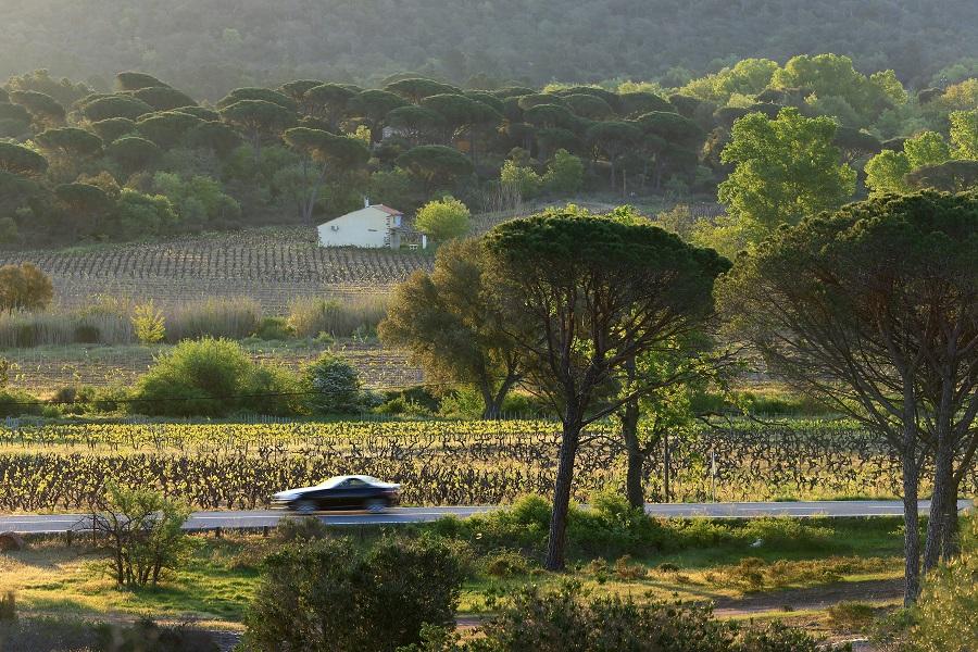 La Provence Orientale