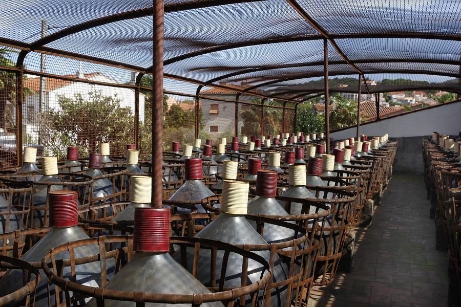 Les vins de Banyuls