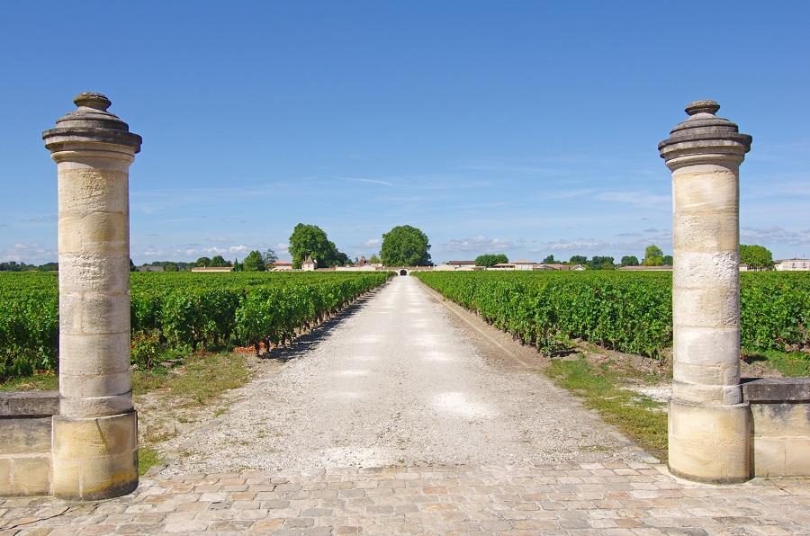 Propriété viticole du Médoc