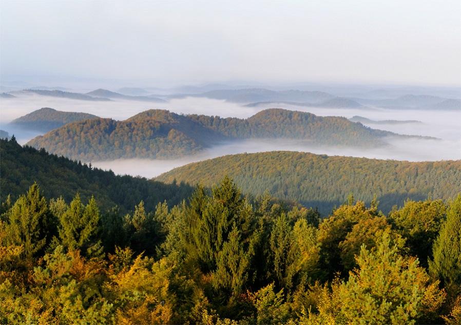 Massif des Vosges du Nord