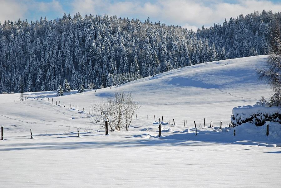 Parc Naturel Régional du Haut Jura