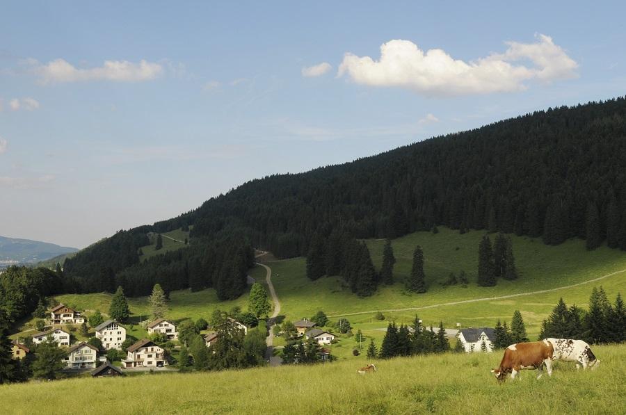 Vallée de Joux en Suisse