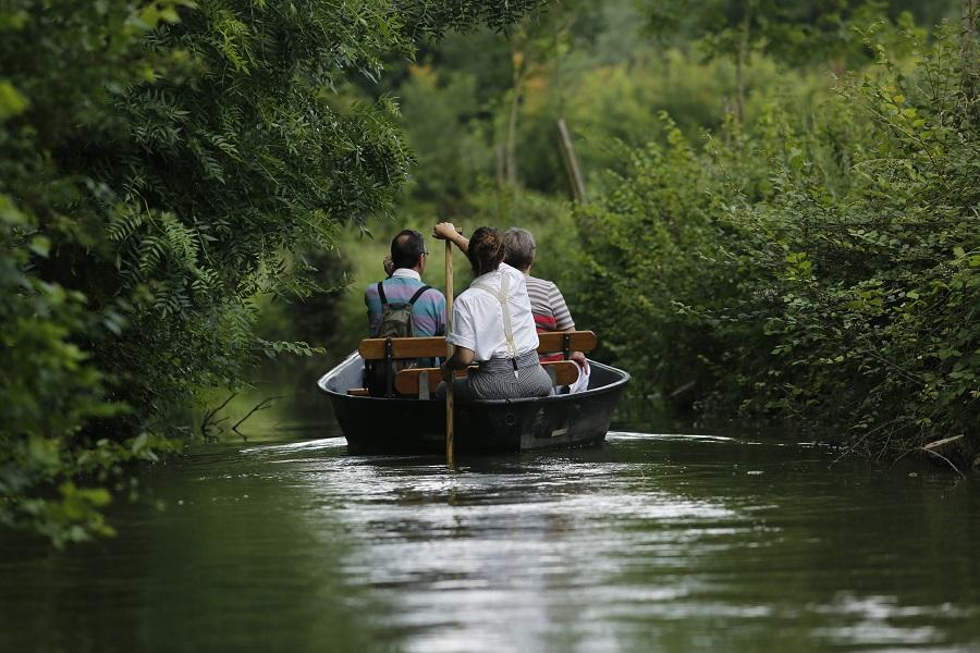 Exploration du Marais Poitevin en barque