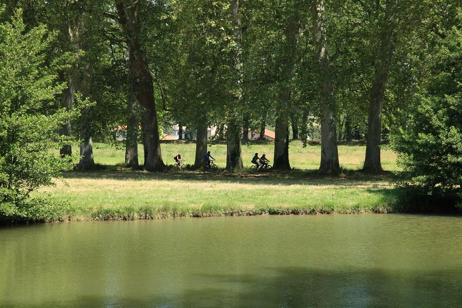 Seuil de Naurouze à Montferrand