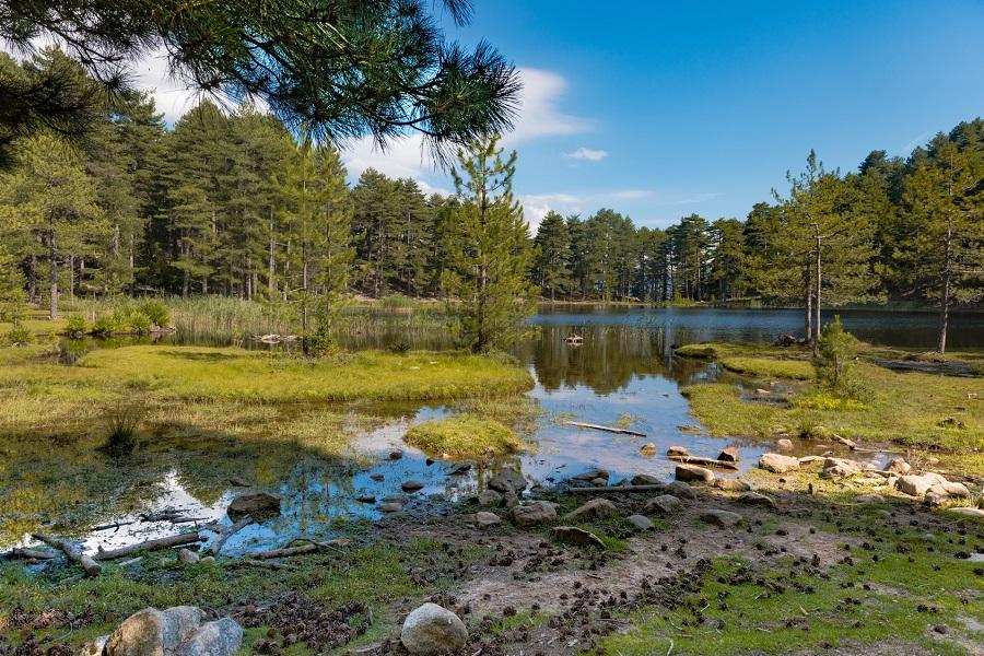 Lac de Creno dans le Massif de Bavella
