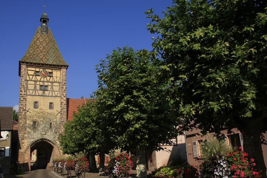 Bergheim dans le Haut-Rhin