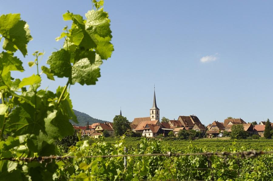 Village de Mittelbergheim