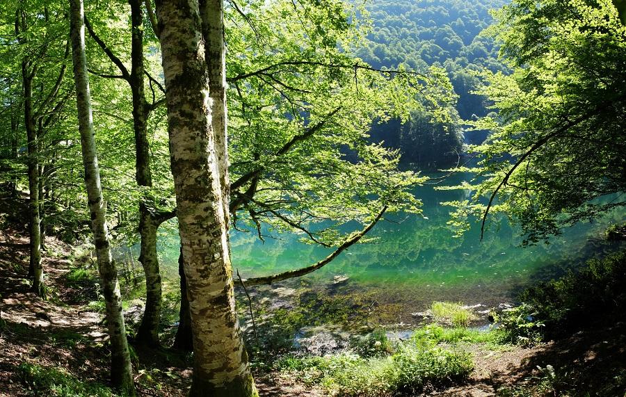 Lac de Bethmale dans la vallée du Couserans