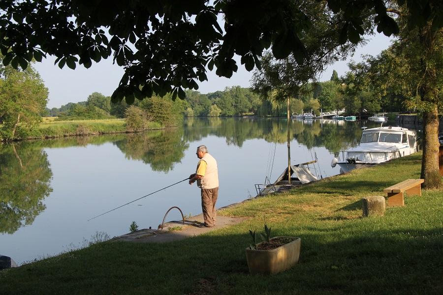 Sur les rives de la Charente