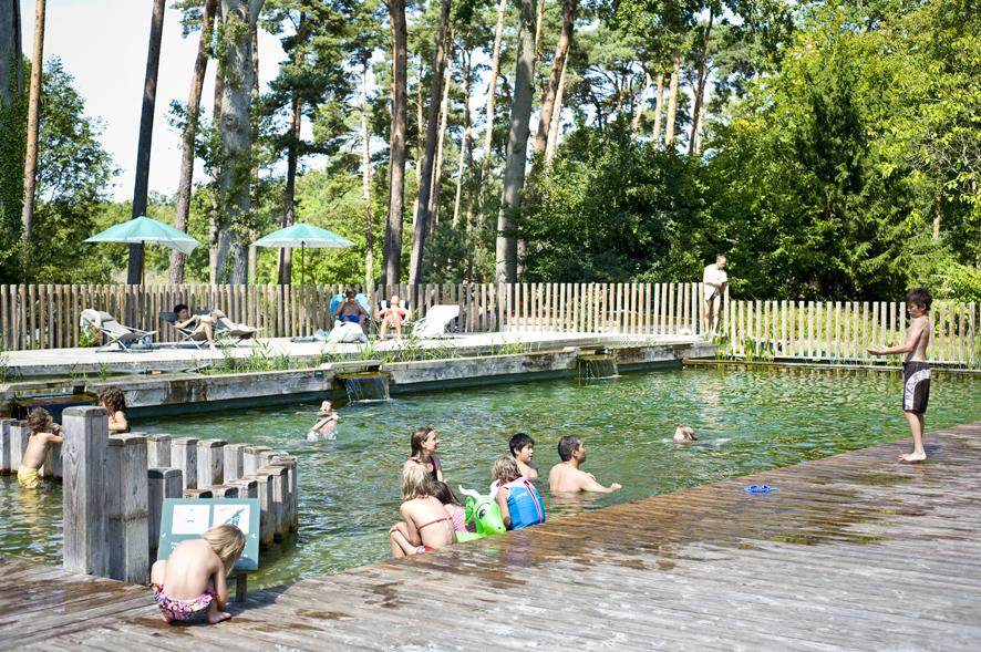 Piscine naturelle au camping Huttopia Rambouillet