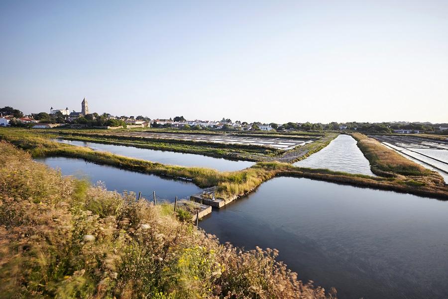 Marais salants à Noirmoutier