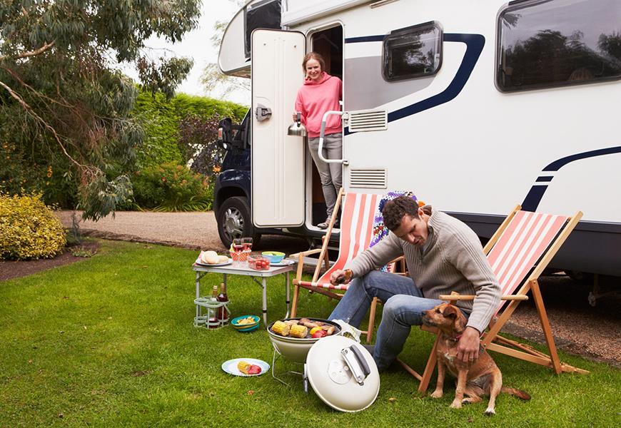 Animal en camping