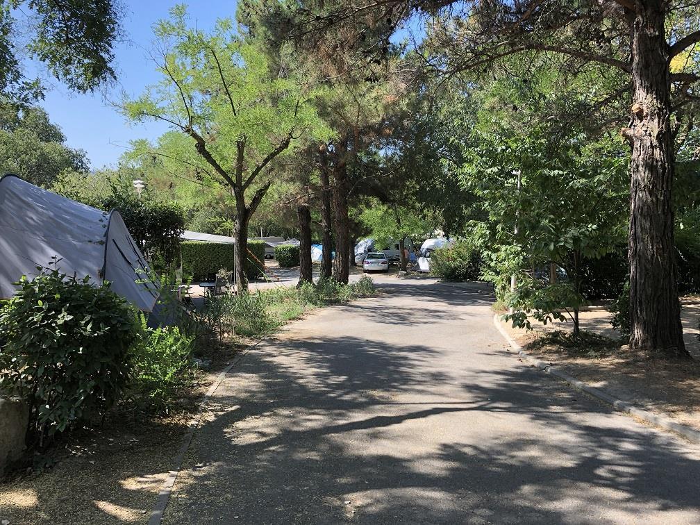 Emplacement - Emplacement Camping - Camping Mas de Nicolas