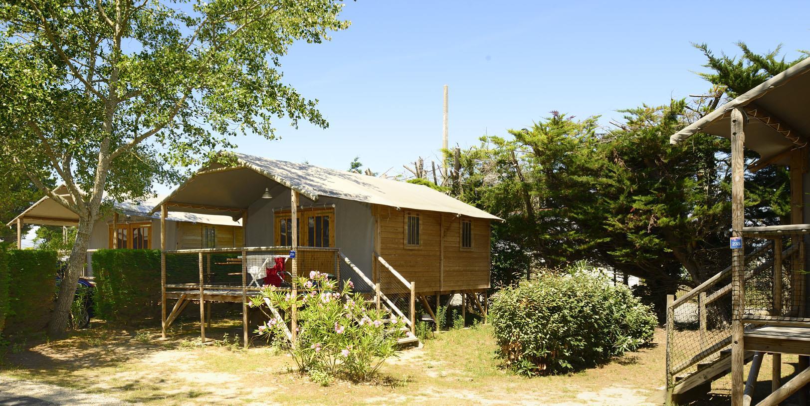 Location - Cabane Lodge Bois Sur Pilotis Confort+ 38M² (2 Chambres) Dont Terrasse Couverte De 8M² - Flower Camping Le Bois d'Amour