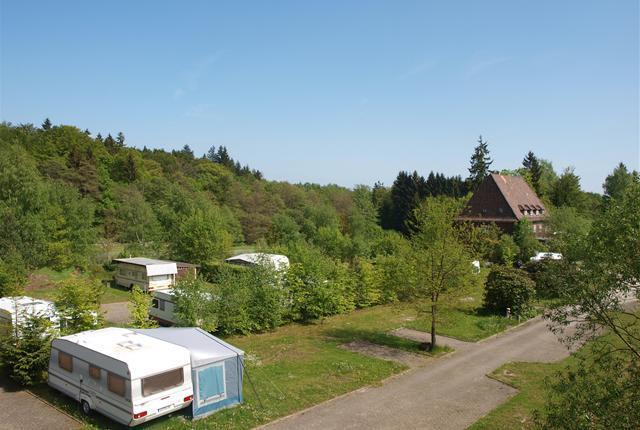 Emplacement - Emplacement Confort - Campingpark Im Borntal