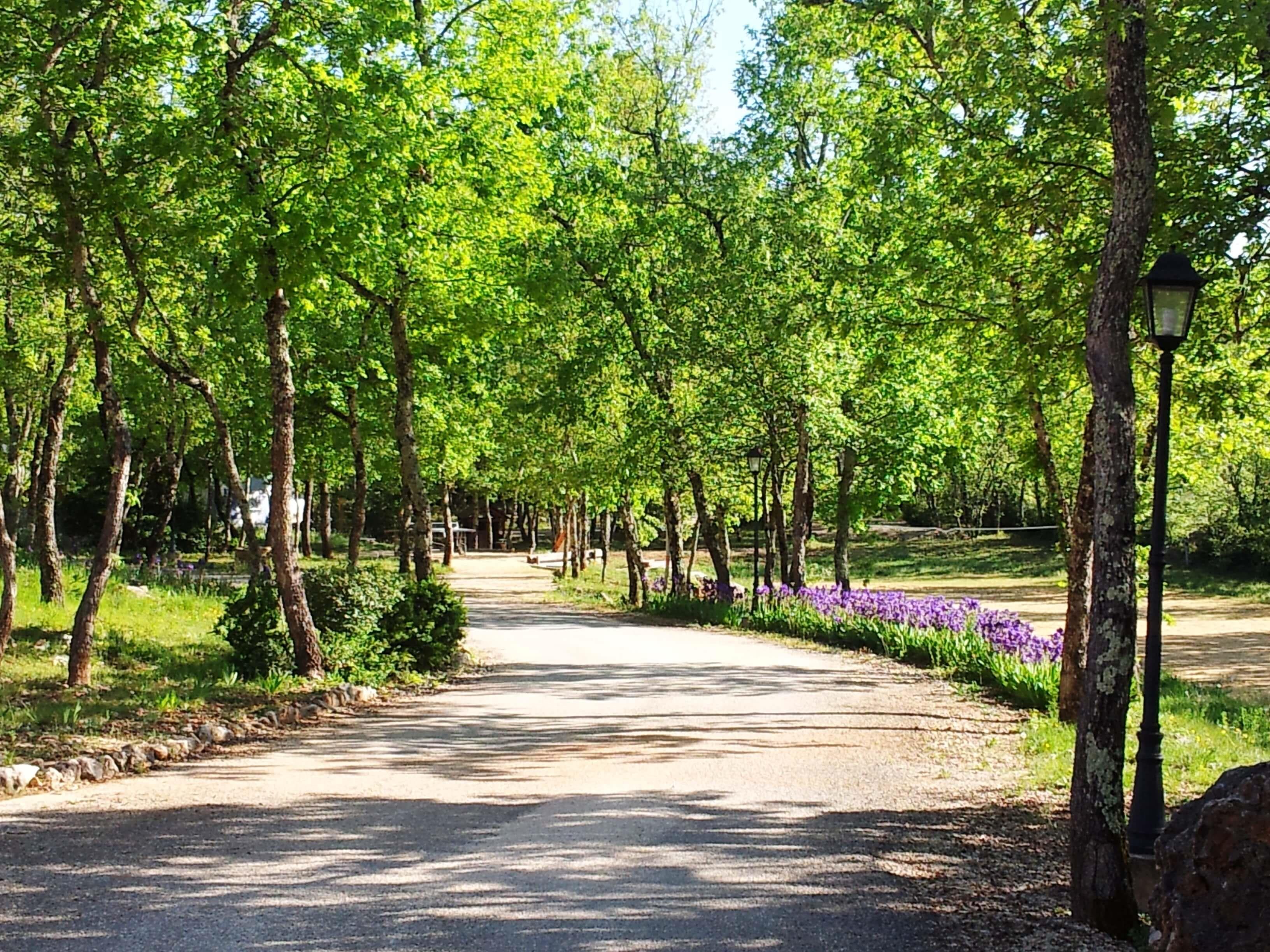 Camping 5* le Clos des Capitelles, Saint-Privat-de-Champclos, Gard