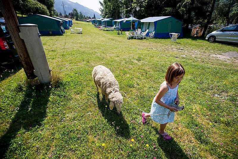 Emplacement - Emplacement : Voiture + Tente/Caravane Ou Camping-Car + Électricité 16A + Raccordement Eau Courante / Évacuation - Camping Bella Austria