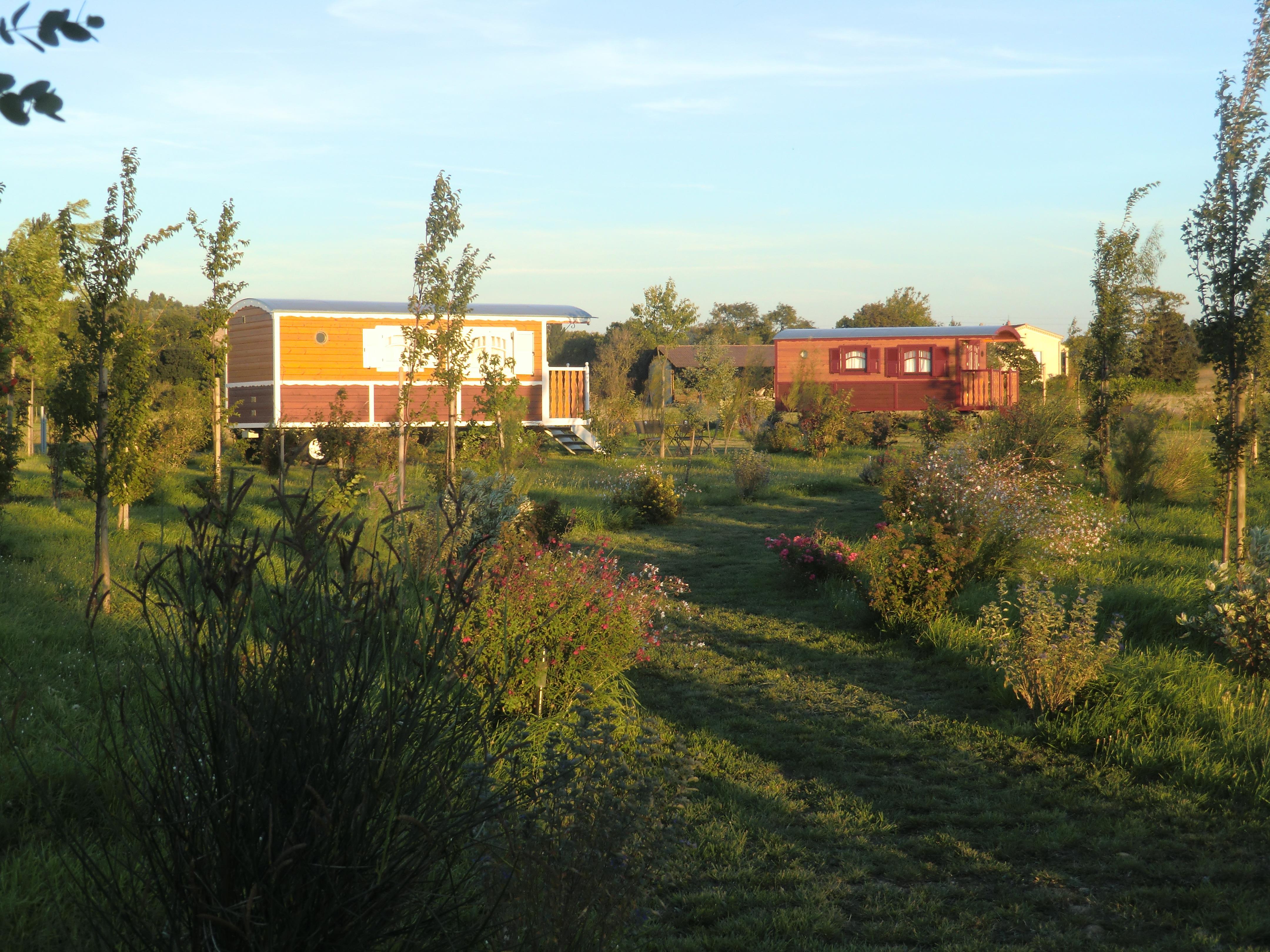 Camping Ferme de l'Autruche Drômoise, Livron-sur-Drôme, Drôme