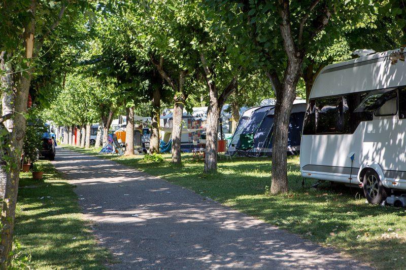 Emplacement - Emplacement Standard - Camping Fossalta