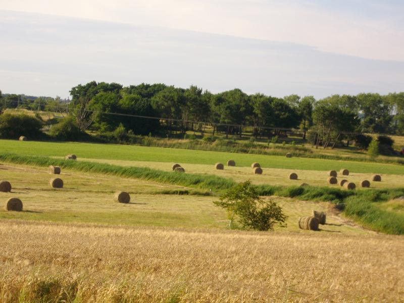 Camping les Vignes, Saint-Augustin, Charente-Maritime