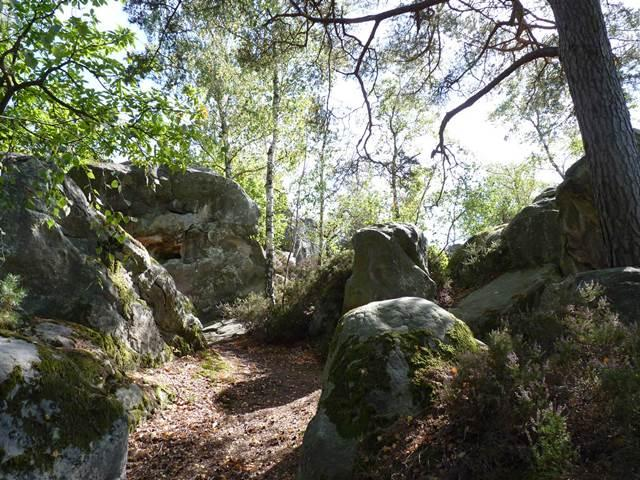 Camping le Nid Vert, Mondeville, Essonne