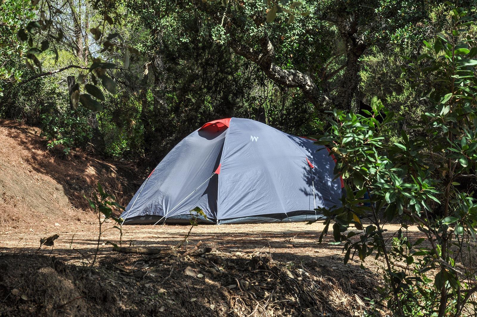 Camping le Damier, Pianottoli-Caldarello, Corse