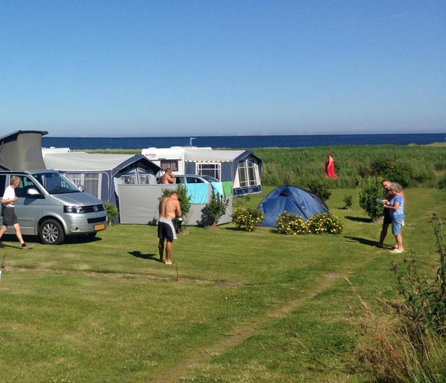 Hals Strand Camping - Hals