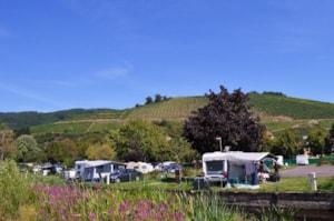 Camping Le Médiéval