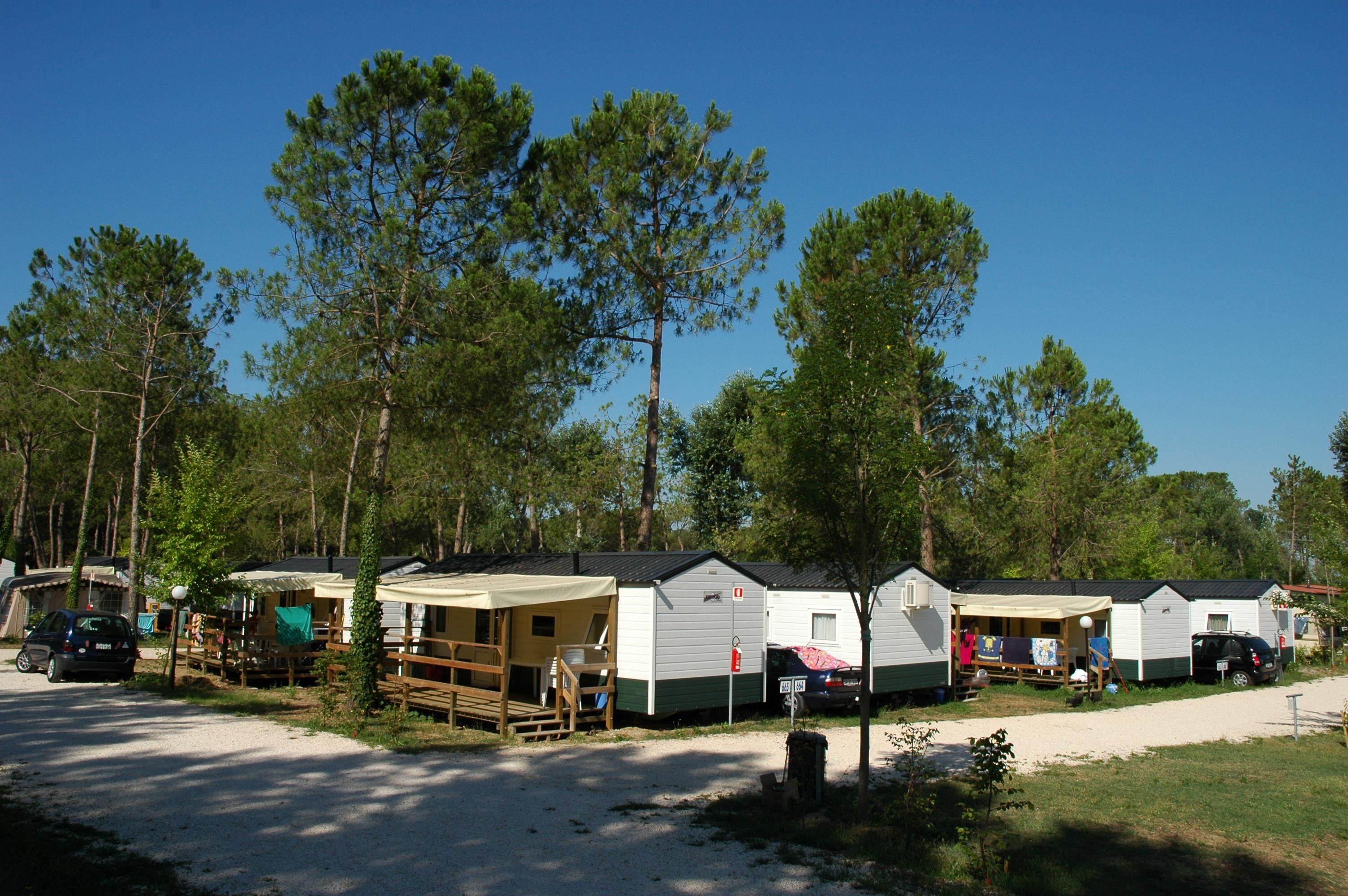 Location - Mobil Home Maxi Caravan Mare - Camping Laguna Village