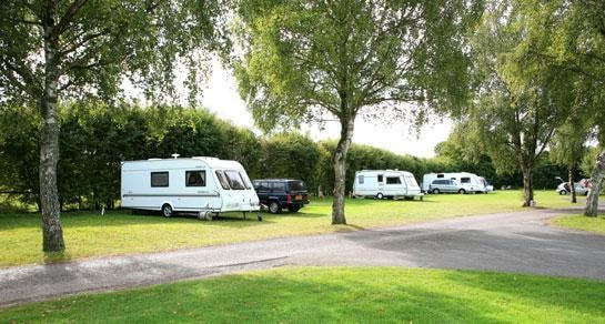 Morn Hill Caravan And Motorhome Club Site - Winchester