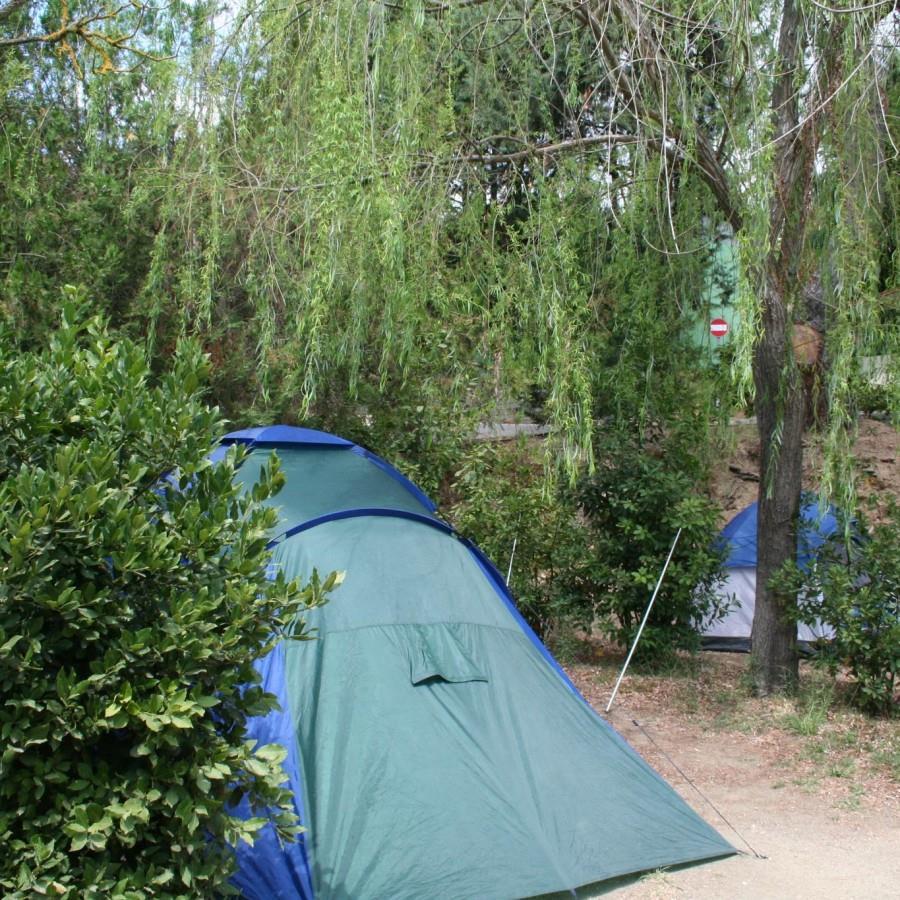 Emplacement - Emplacement (Tente Canadienne) + Électricité 6A - Happy Camping