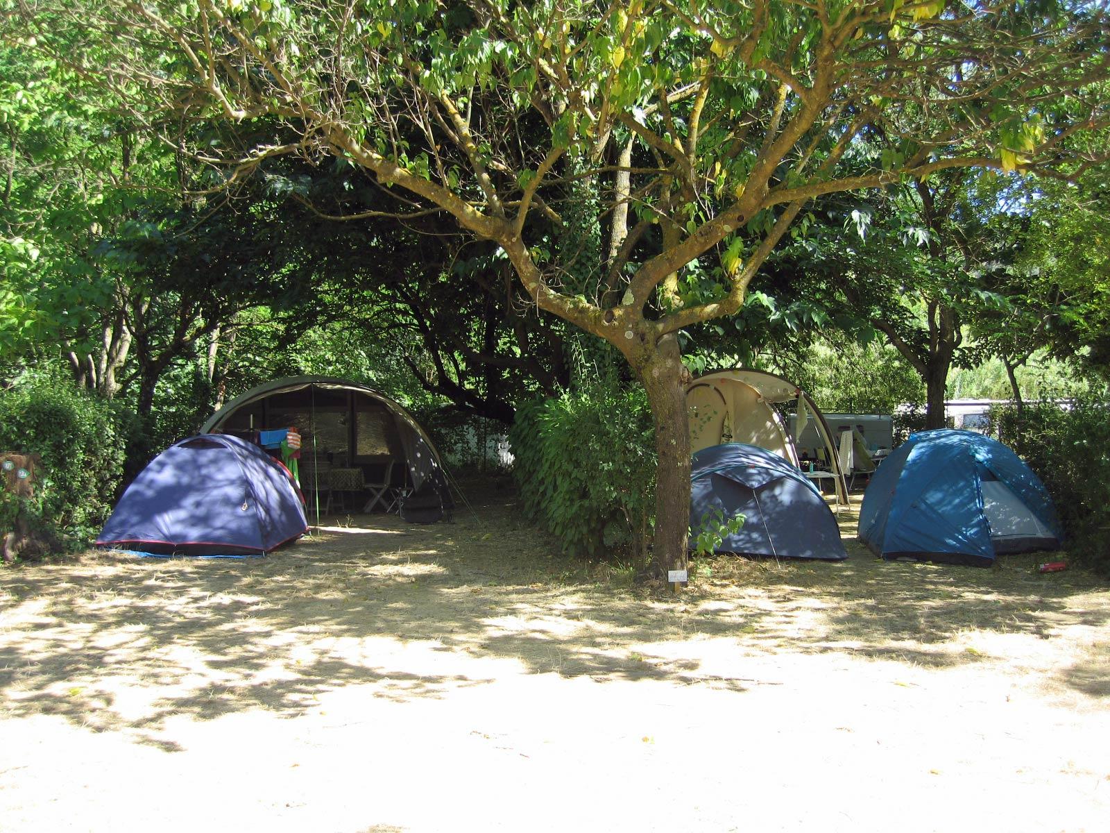 Emplacement - Forfait Confort (1 Tente, Caravane Ou Camping-Car / 1 Voiture / Électricité 10A) + Wifi Gratuit - Camping Les Tomasses