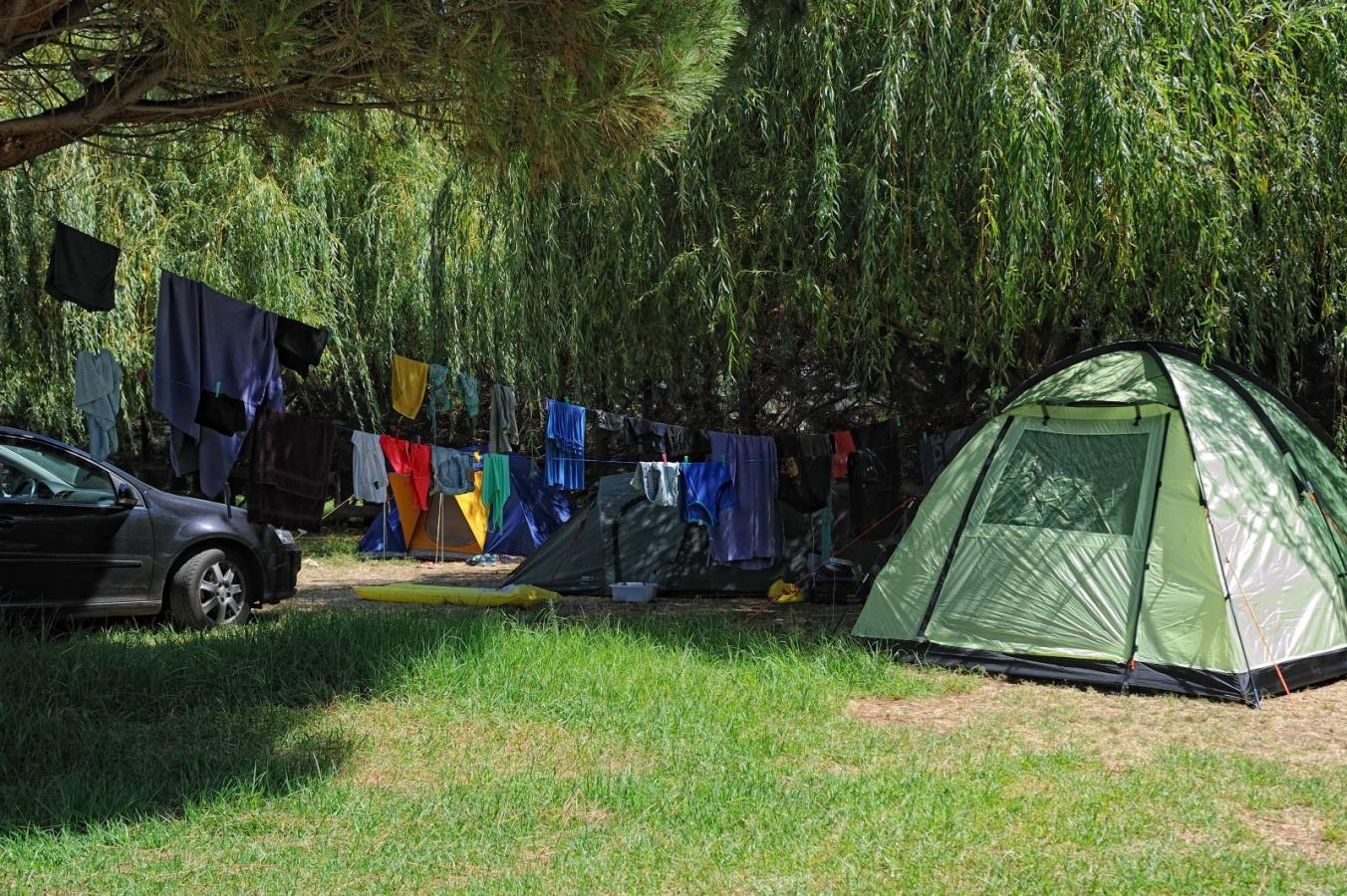 Establishment Camping De La Plage - Algajola