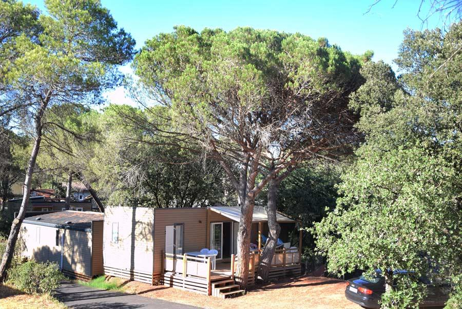Location - California 6 Pers. + 1 Place Véhicule. Premium - Camping Les Cigales