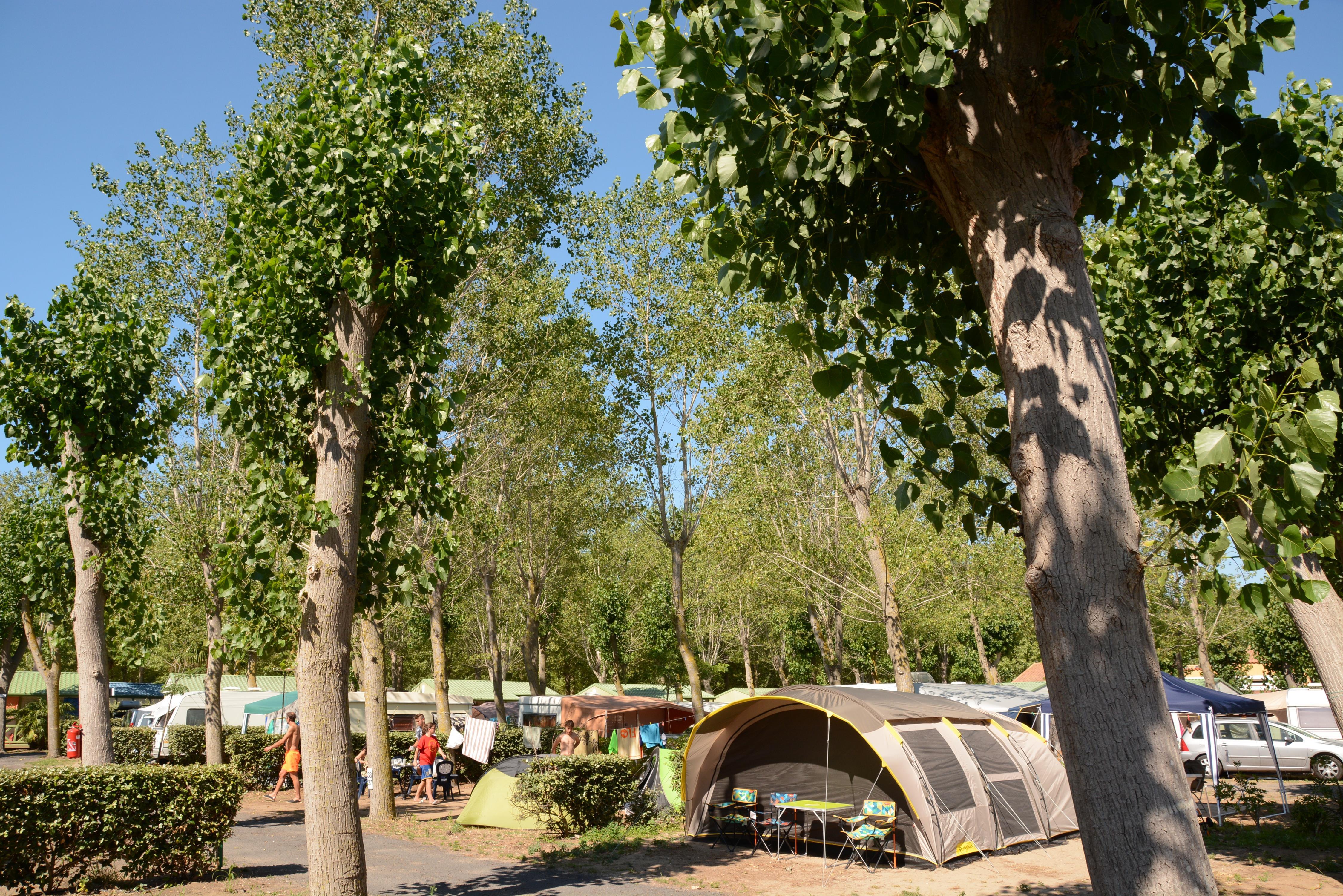 Camping le Napoleon, Vias, Hérault
