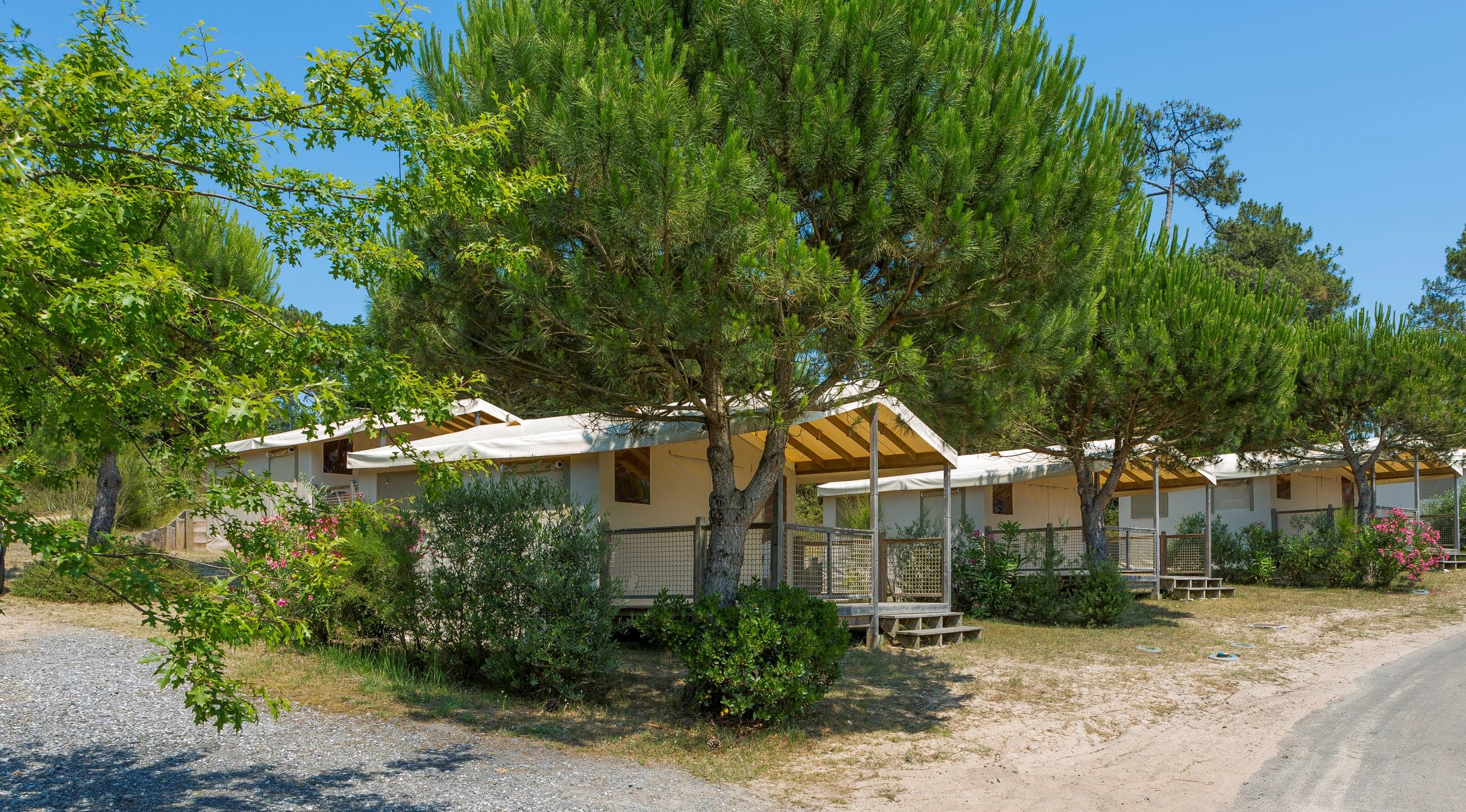 Location - Tente Farou - Camping Le Saint Martin