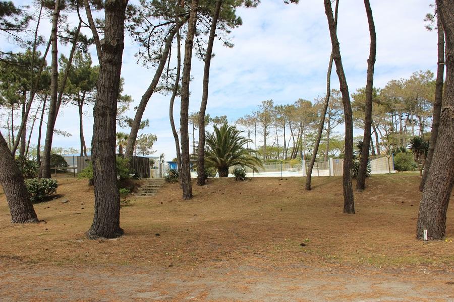 Emplacement - Emplacement Sans Électricité (80 -100 M²) - Camping Le Saint Martin