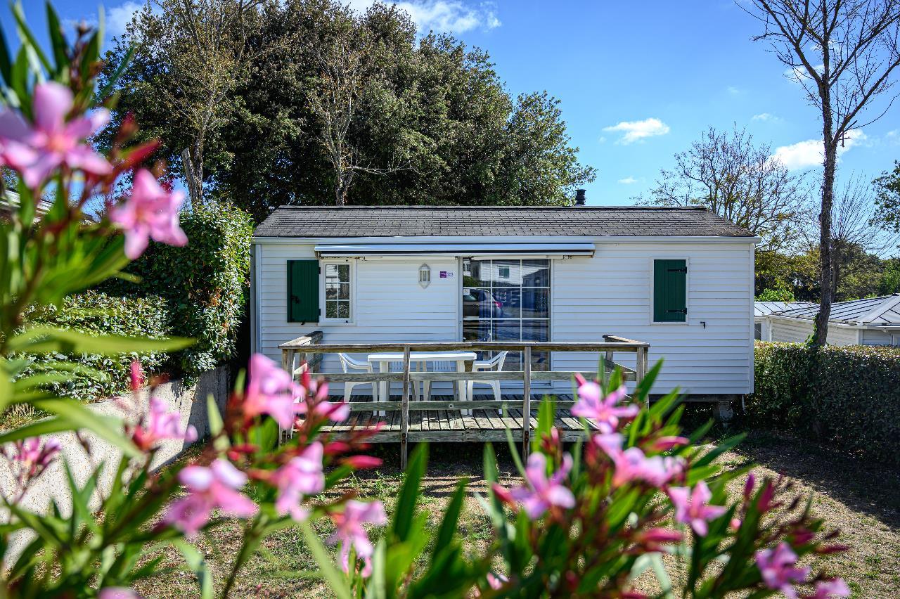 Location - Cottage Alcea - Camping Les Gros Joncs