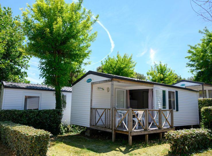 Location - Cottage Centaurée - Camping Les Gros Joncs
